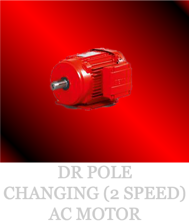 DR-POLE-CHANGING-(2-SPEED)-AC-MOTOR-_03