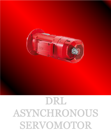 DRL-ASYNCHRONOUS-SERVOMOTOR_03